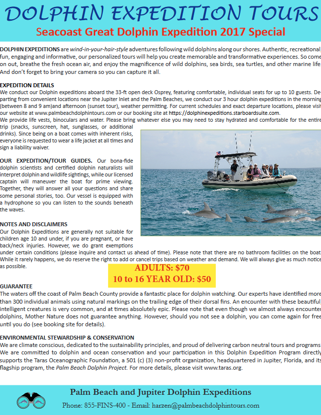 dolphinexpeditiontours.png