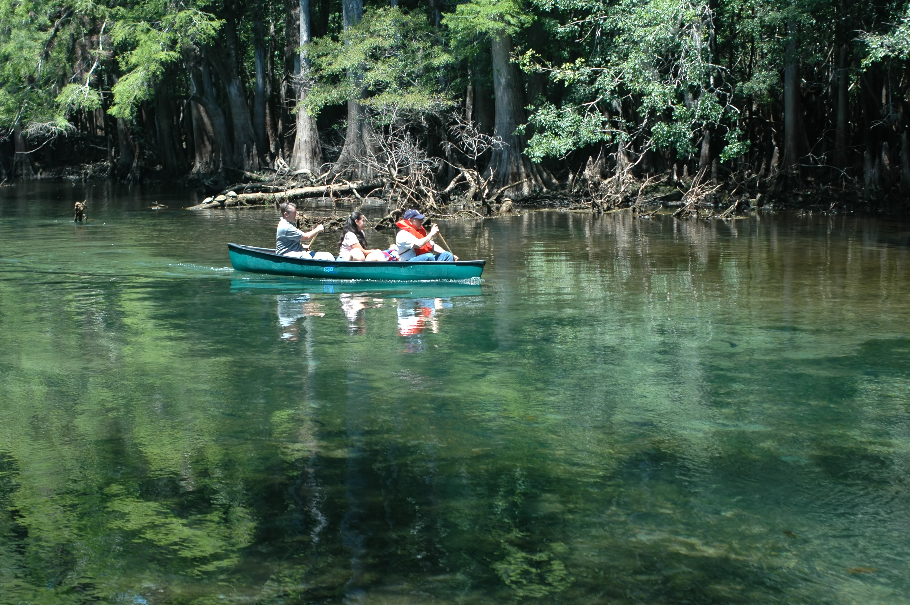 Family canoes in one of Florida's spring destinations