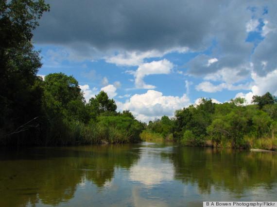 o-OCALA-NATIONAL-FOREST-570.jpg