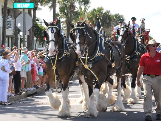 budclydesdales.jpg